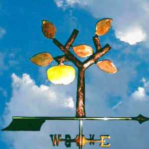 Publishing Logo Weathervane