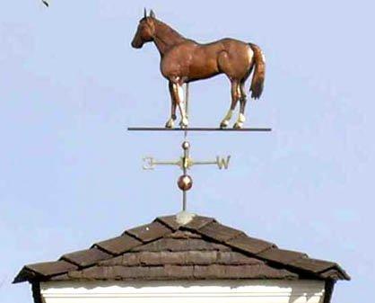 American Quarter Horse Weathervane 2